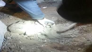 العثور على جثة شاب بكريتر ومقتل فتاة في دار سعد