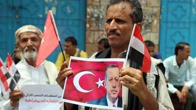 التدخل التركي في اليمن أحد ثلاثة مشاريع تستهدف المنطقة العربية
