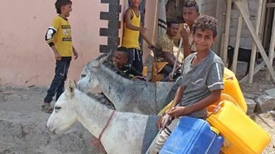المصاعب الاقتصادية تعيد «الحمير» للخدمة في شوارع عدن