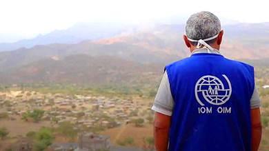 الهجرة الدولية: ليس الآن وقت نسيان اليمن